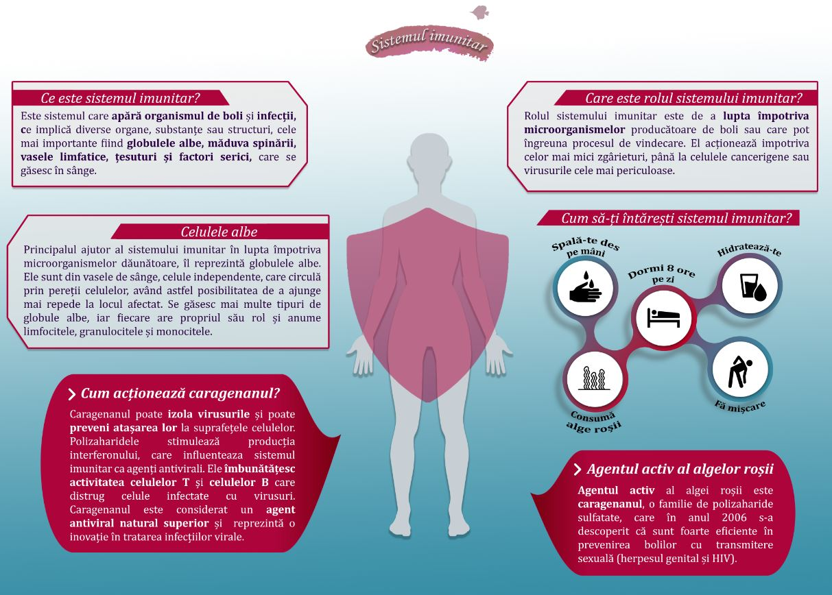 infografic_sistemul_imunitar_si_algele